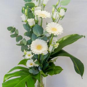 Krysanteemi-Eustoma